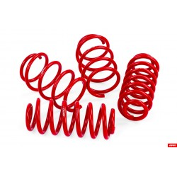 APR Roll-Control Lowering Springs S3 (8V)