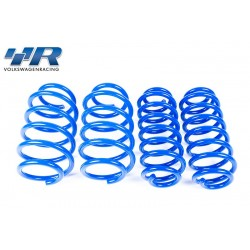 Racingline Performance Sport Spring Set - VW Polo GTI (6R)